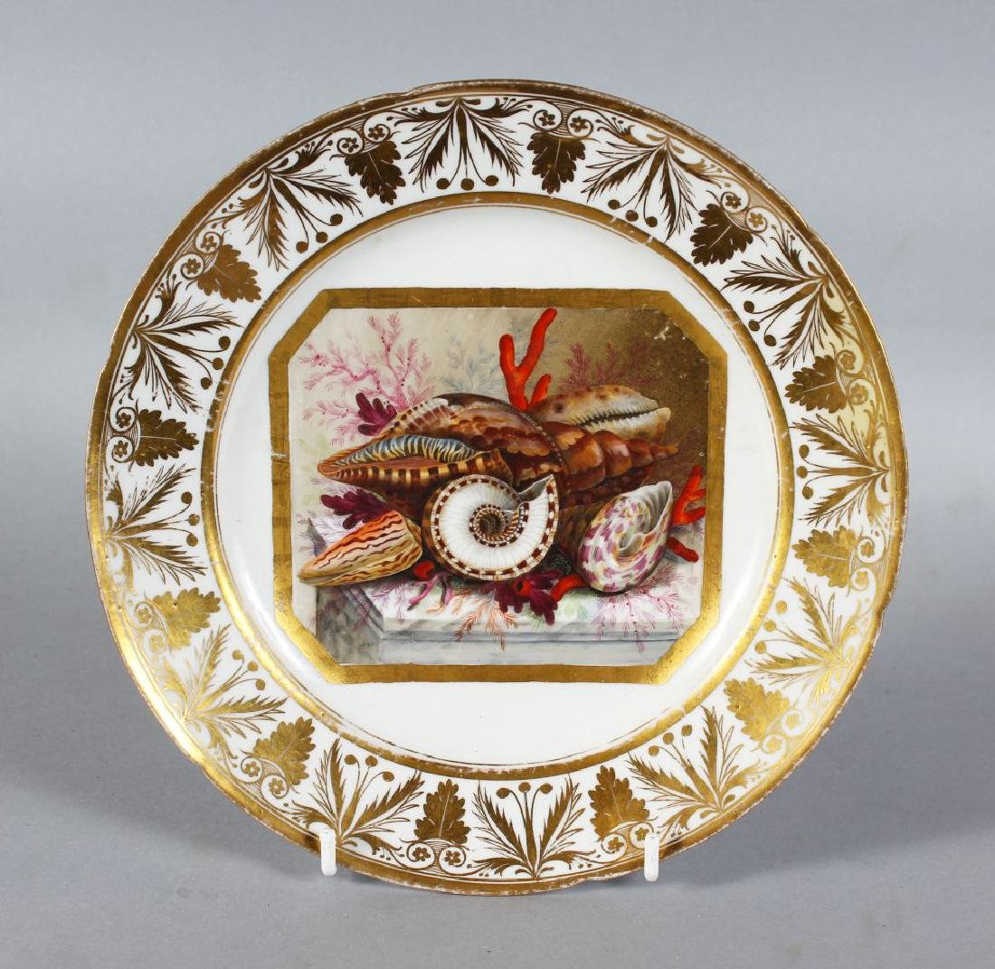 A DERBY PORCELAIN PLATE with rich gilt border, the
