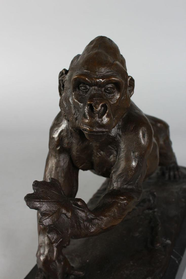 A BRONZE OF A GORILLA  on a rectangular marble base. - 2