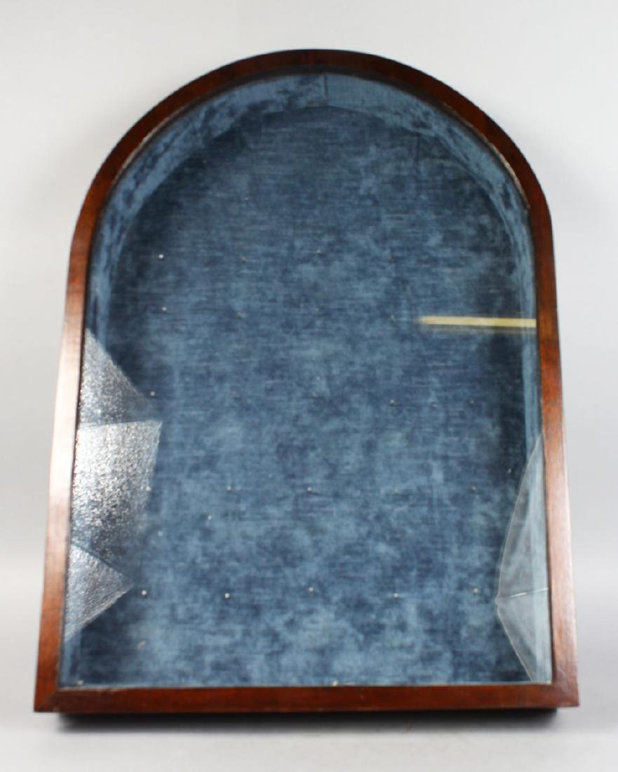 A VICTORIAN MAHOGANY SHOW CASE, with domed top, glass