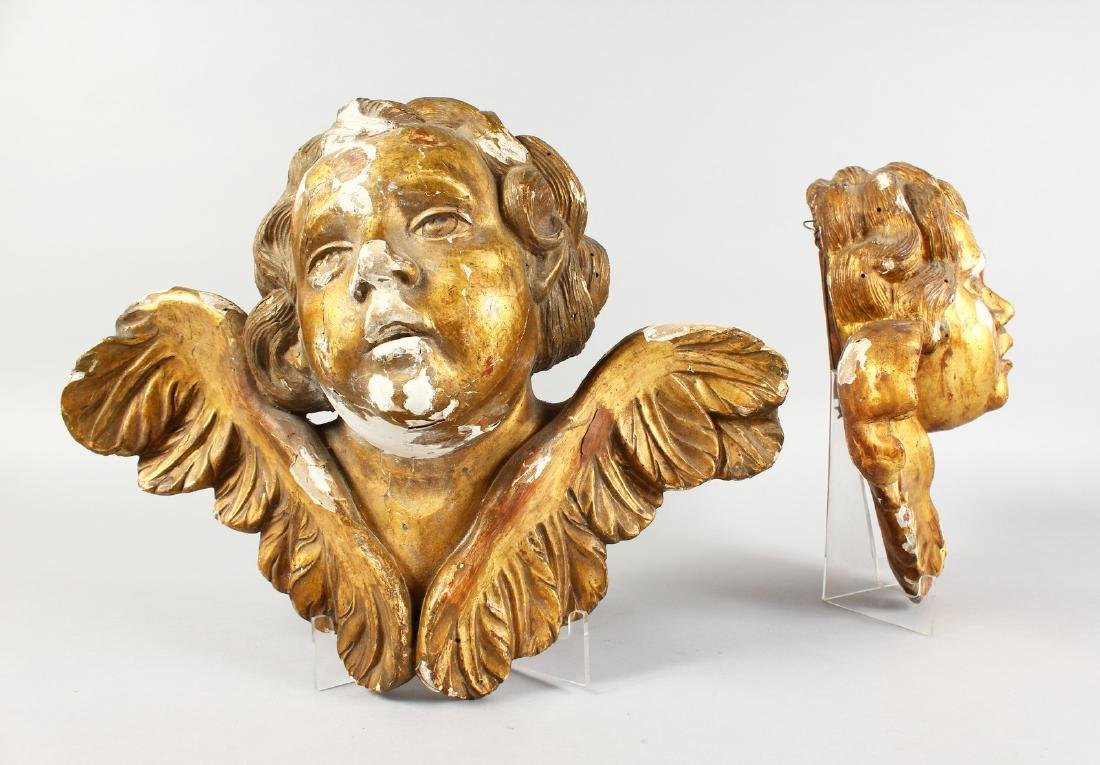 A PAIR OF ITALIAN CARVED WOOD AND GILDED ANGEL HEADS,