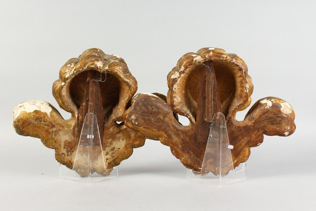 A PAIR OF ITALIAN CARVED WOOD AND GILDED ANGEL HEADS, - 3