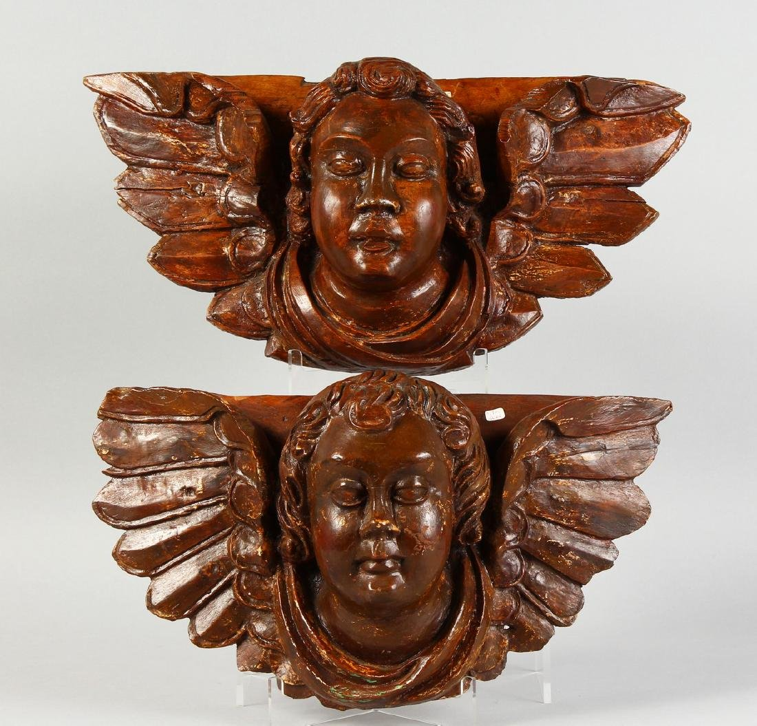 A PAIR OF ITALIAN CARVED WOOD ANGEL HEADS.  16ins long.