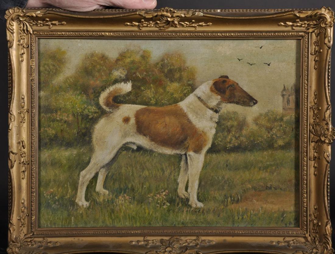 Early 20th Century English School. A Fox Terrier, Oil - 2