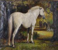 20th Century English School Study of a Grey Horse in a