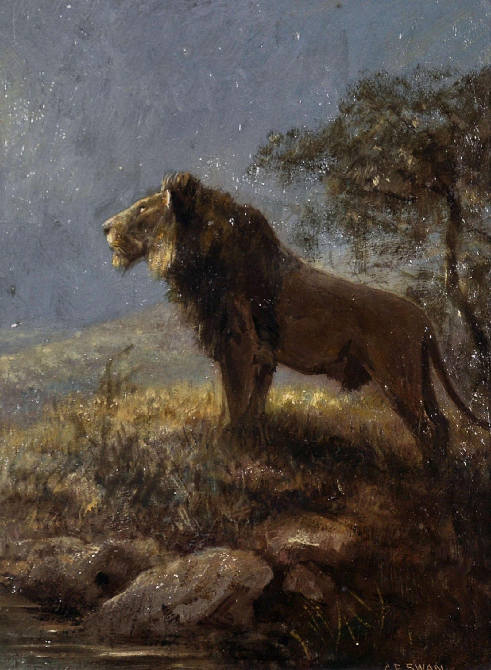 Cuthbert Edmund Swan (1870-1931) British. A Lion