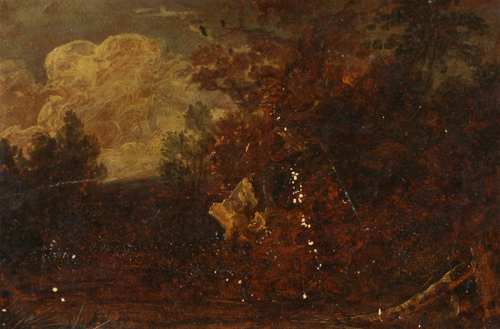 18th Century Dutch School. A Windswept Landscape, Oil