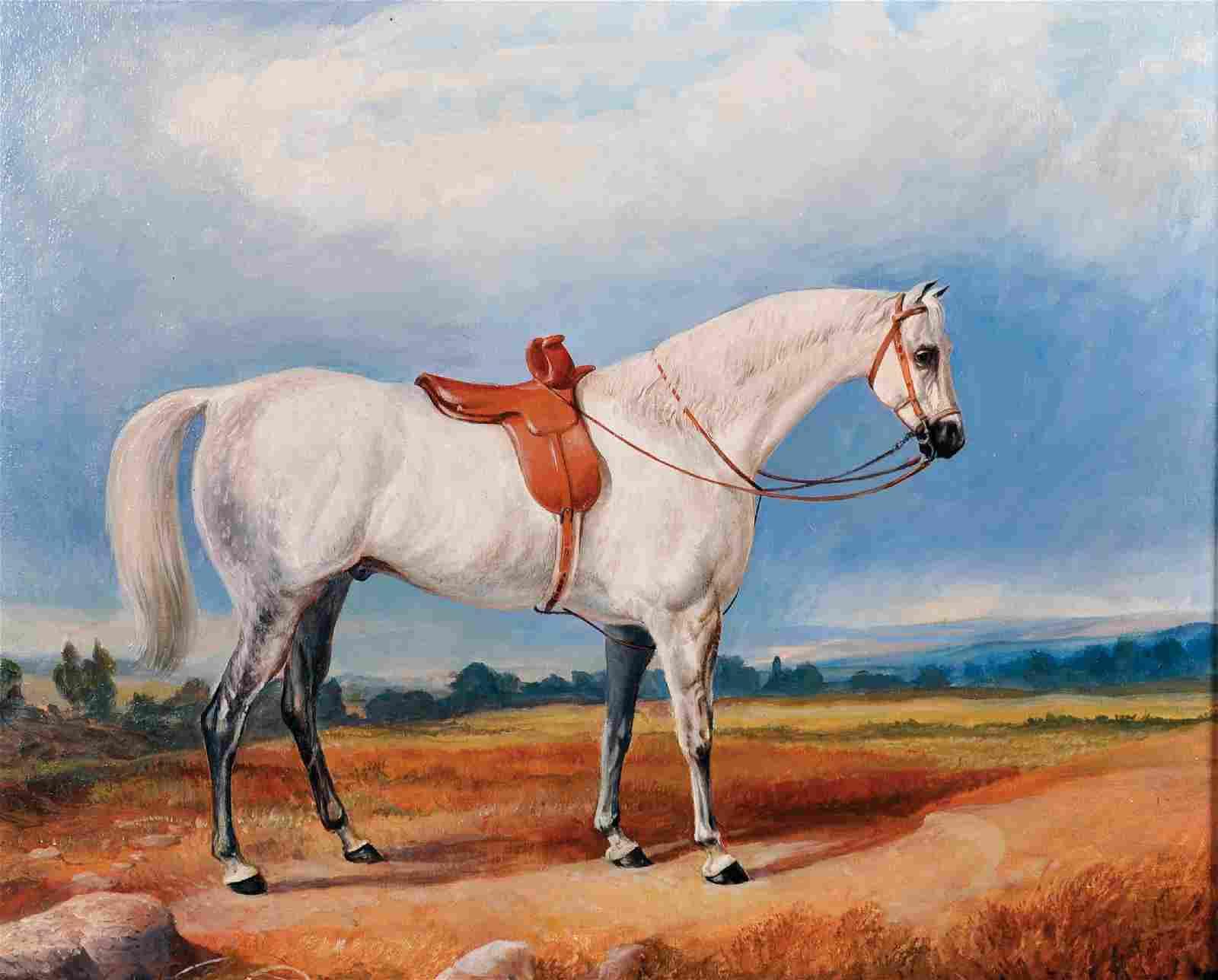 20th Century English School. Study of a Saddled Horse