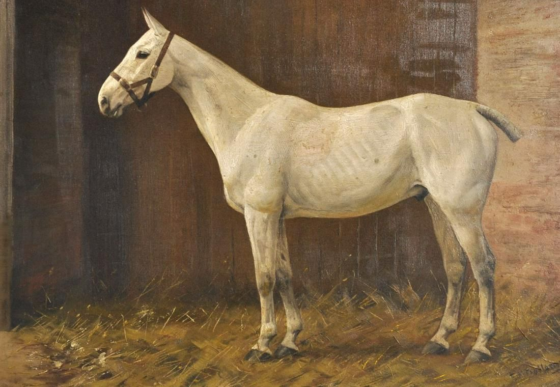 Frances Mabel Hollams (1877-1963) British. A Grey Horse