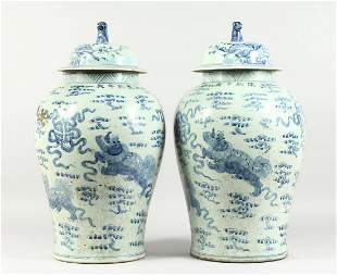 A PAIR OF 20TH CENTURY CHINESE BLUE AND WHITE BALUSTER