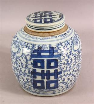 AN 18TH / 19TH CENTURY CHINESE BLUE & WHITE PORCELAIN