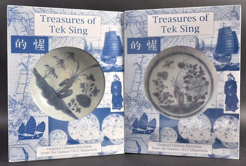 A PAIR OF CHINESE TEK SING CARGO BLUE AND WHITE DISHES