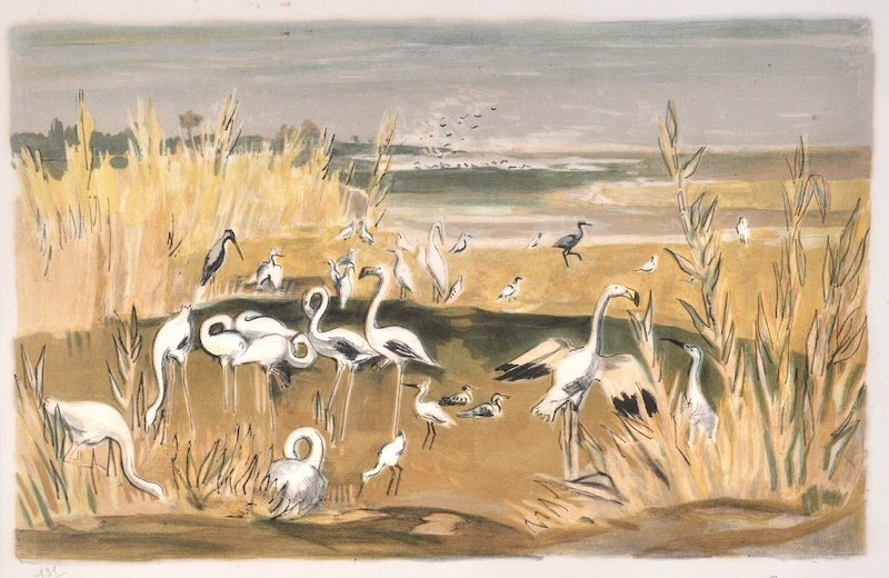 Yves Brayer (1907-1990) French. 'Flamingos',
