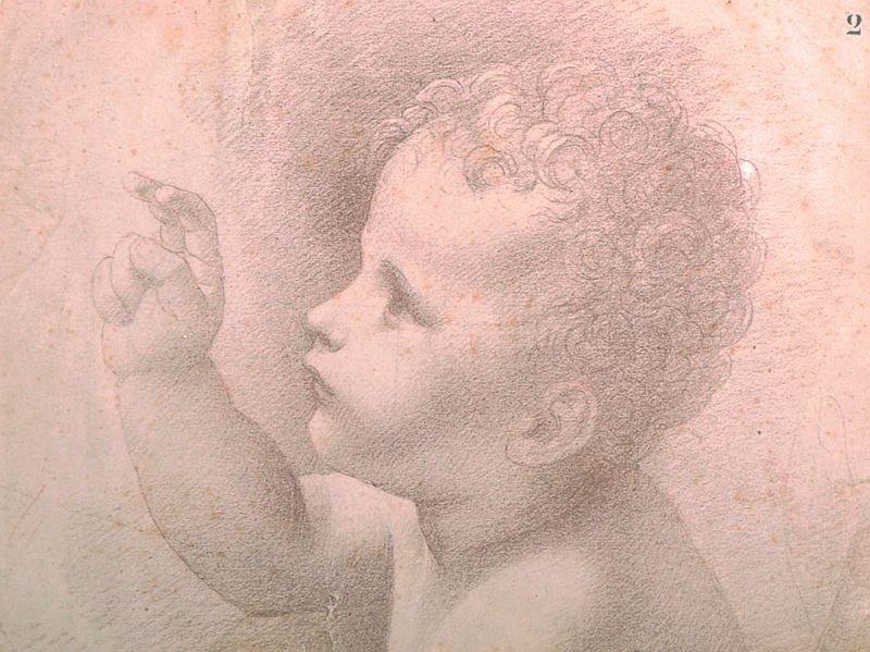 19th Century Italian School. Head of a Cherub, Chalk,