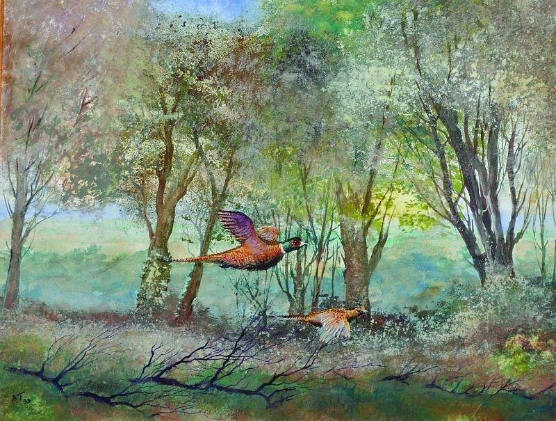Archibald Thorburn (1860-1935) British. 'Pheasants