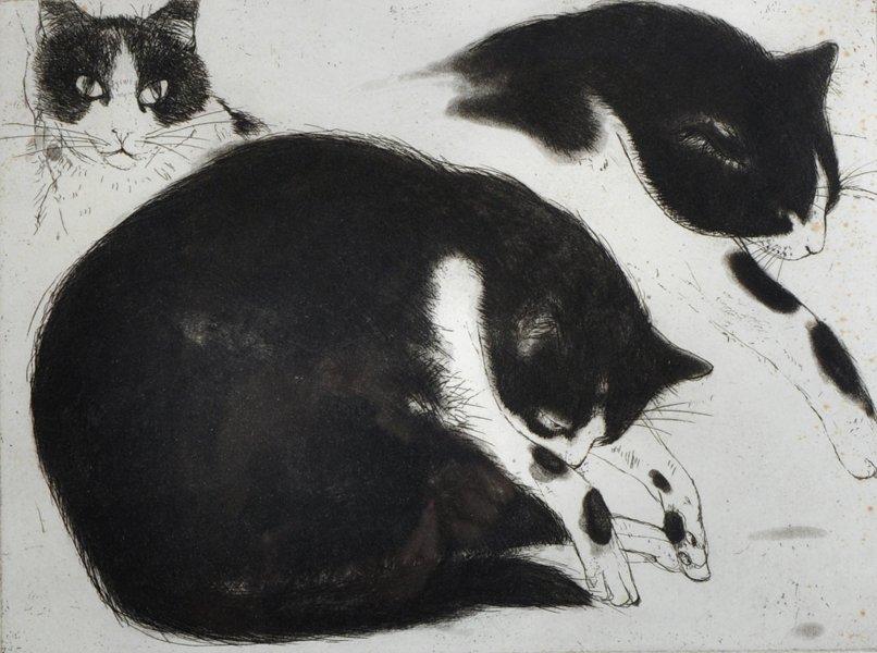 """Elizabeth Violet Blackadder (1931-    ) British. """"Cat"""