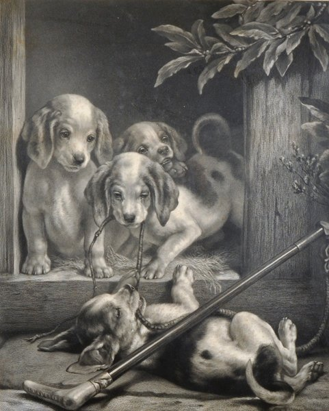 Samuel Henry Carter (1835-1892) British. Puppies