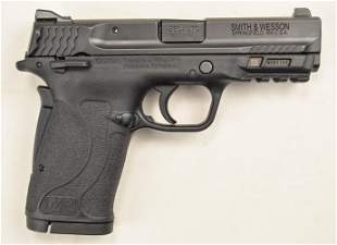 Smith & Wesson Shield EZ 380 Pistol