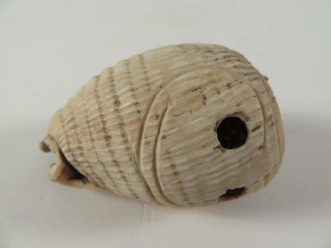 Pre Columbian Shell Pendant