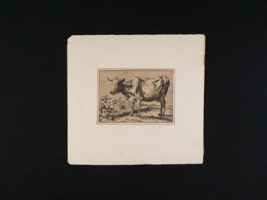 P Potter Old Master Engraving Standing Bull