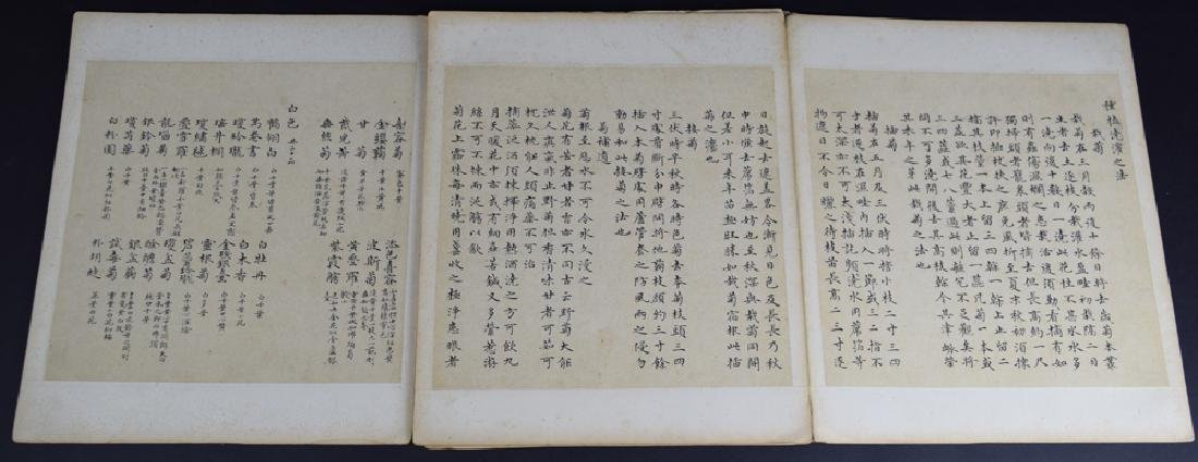 Twenty pages of Chinese calligraphy album of - 2