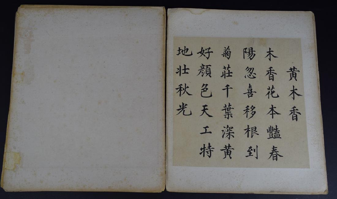 Twenty pages of Chinese calligraphy album of - 3