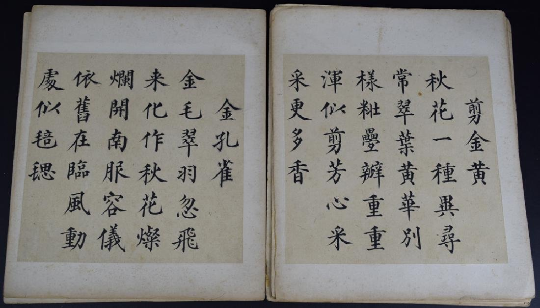 Twenty pages of Chinese calligraphy album of - 6