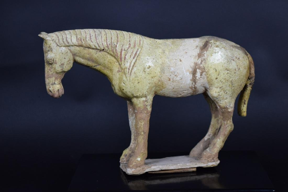 Chinese Tang or Liao dynasty celadon pottery horse