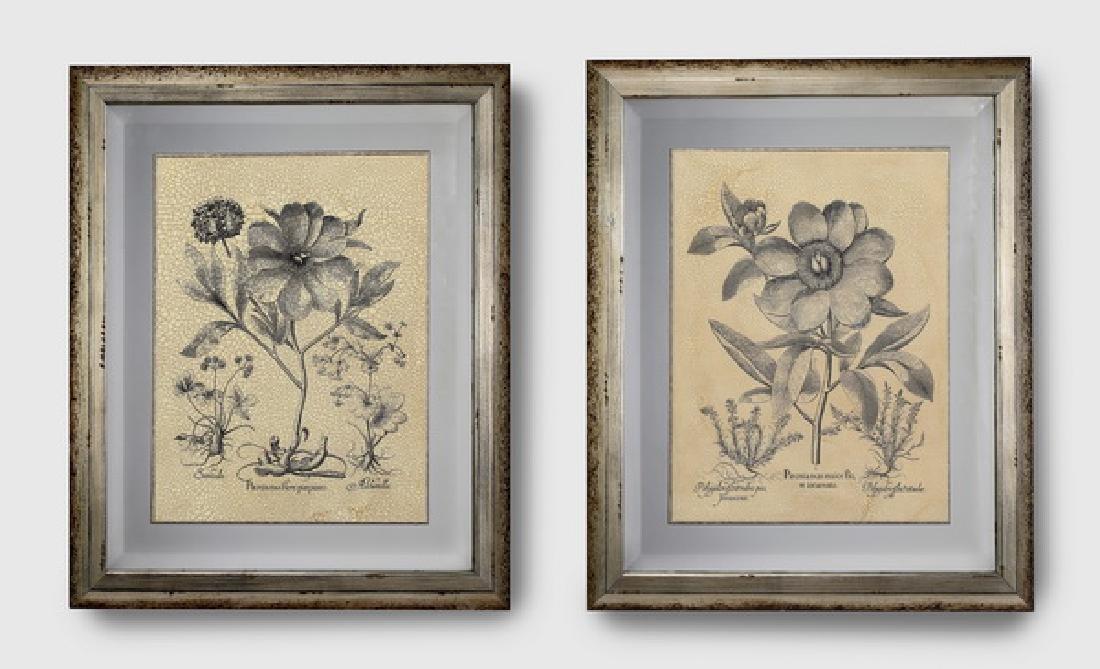 (2) Contemporary crackle-glazed botanical prints
