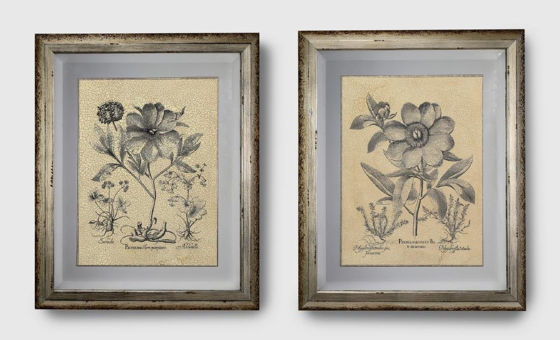 (2) Contemporary crackle glazed botanical prints