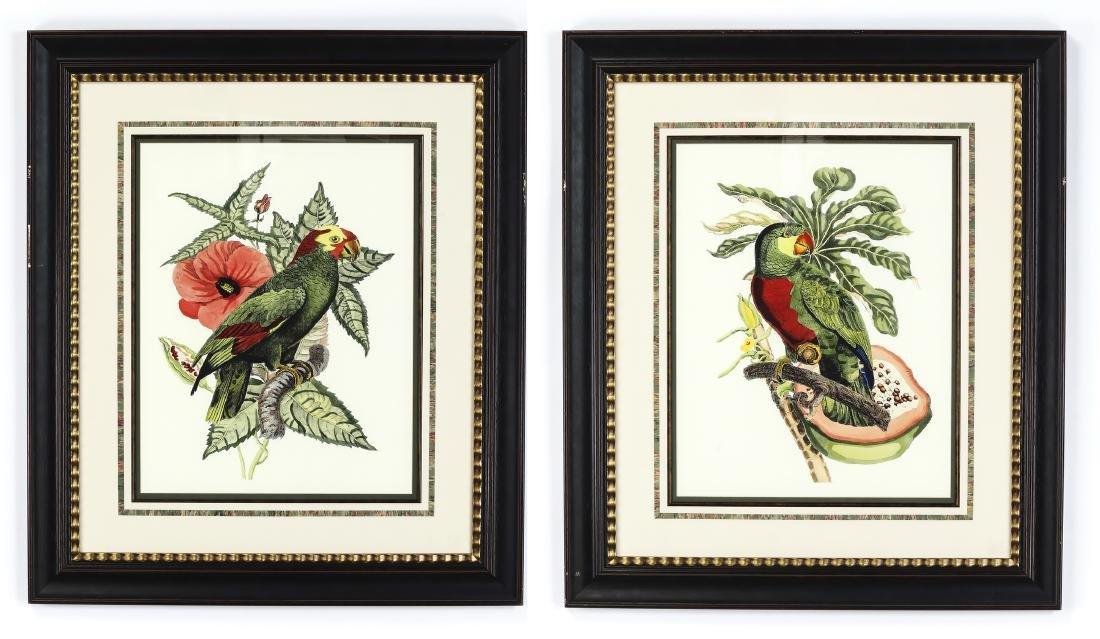 (2) Contemporary tropical bird and botanical prints