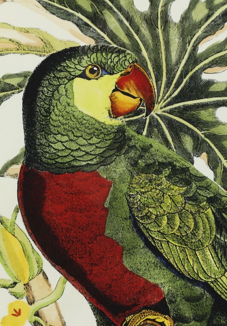 (2) Contemporary tropical bird and botanical prints - 3