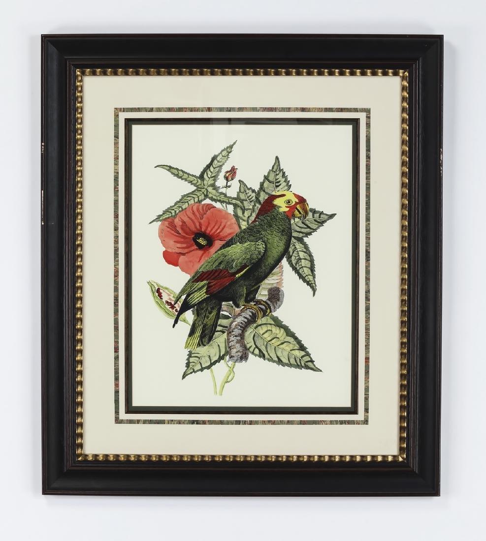 (2) Contemporary tropical bird and botanical prints - 4