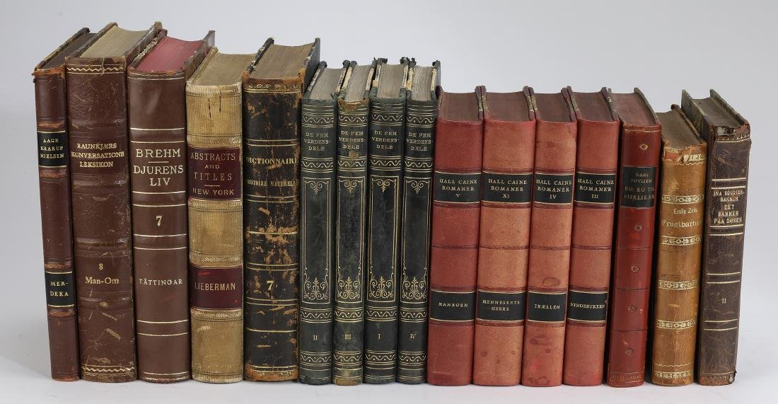 Thirty foreign language leather bound volumes - 2