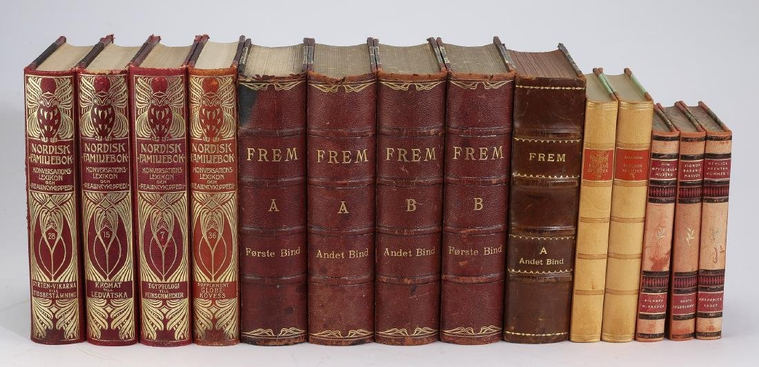 Thirty foreign language leather bound volumes - 3