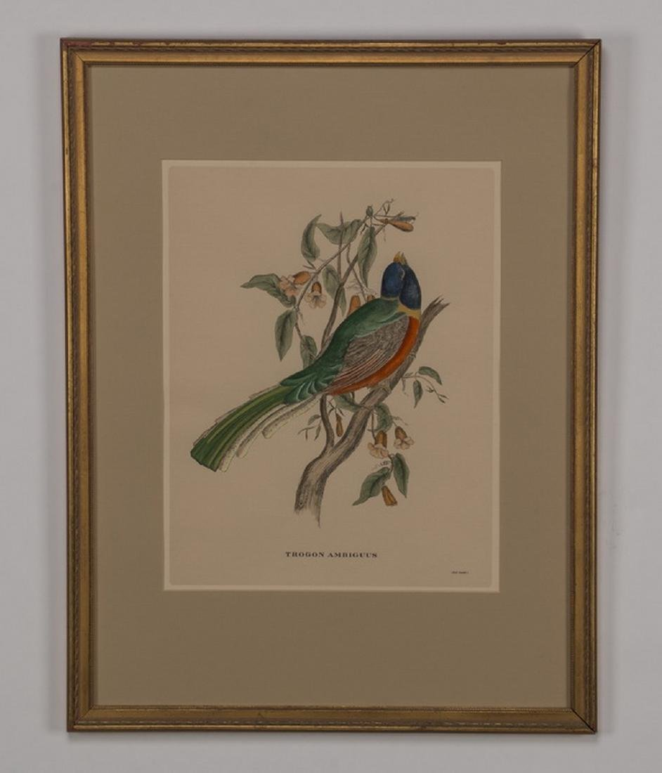 (5) 19th c. hand colored engravings, matted & framed - 9