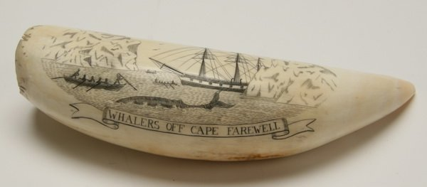 9: Pair of 19th c. whale tooth scrimshaw - 3