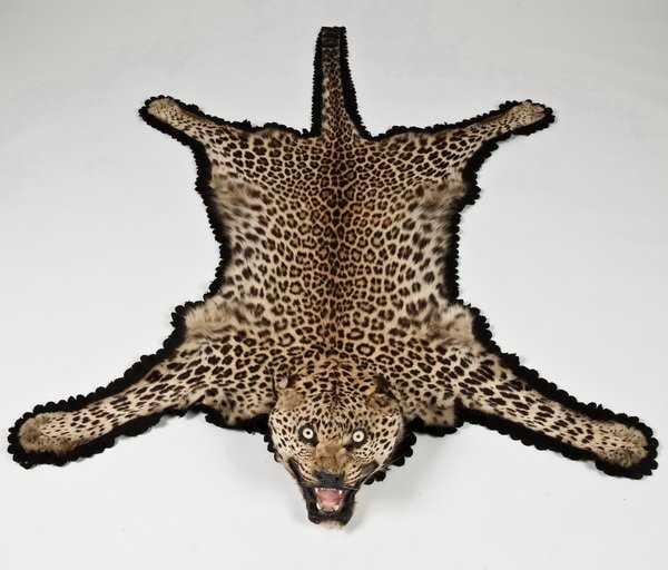 151: Vintage Leopard Skin Rug