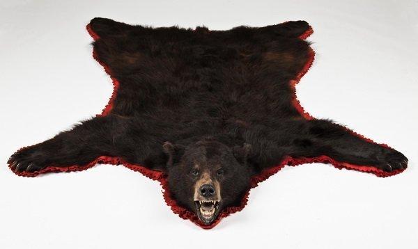 284: Vintage Brown Bear Skin Rug