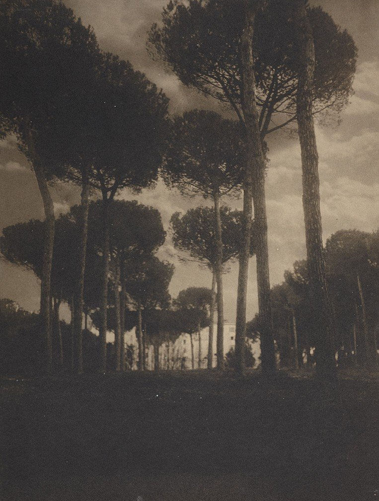 1016: Hermann Clemens Kosel, Villa Borghese