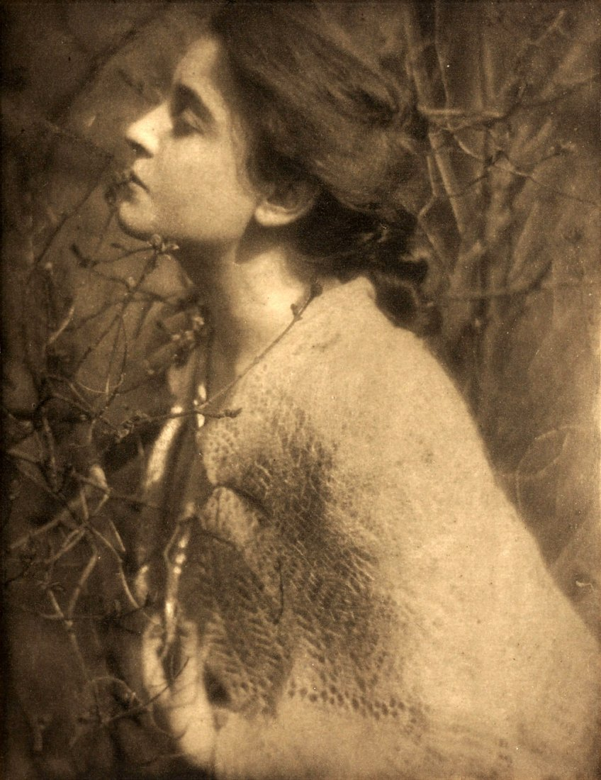 EDWARD STEICHEN (1879–1973) Lilac Budes, 1906