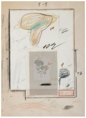 CY TWOMBLY Plate III from Natural History Part I 1974