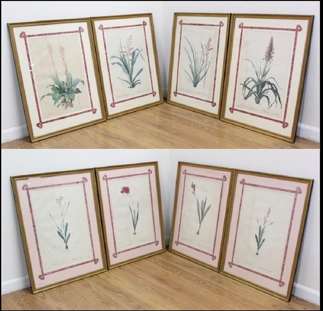 :After Pierre-Joseph Redouté, 8 Floral Prints