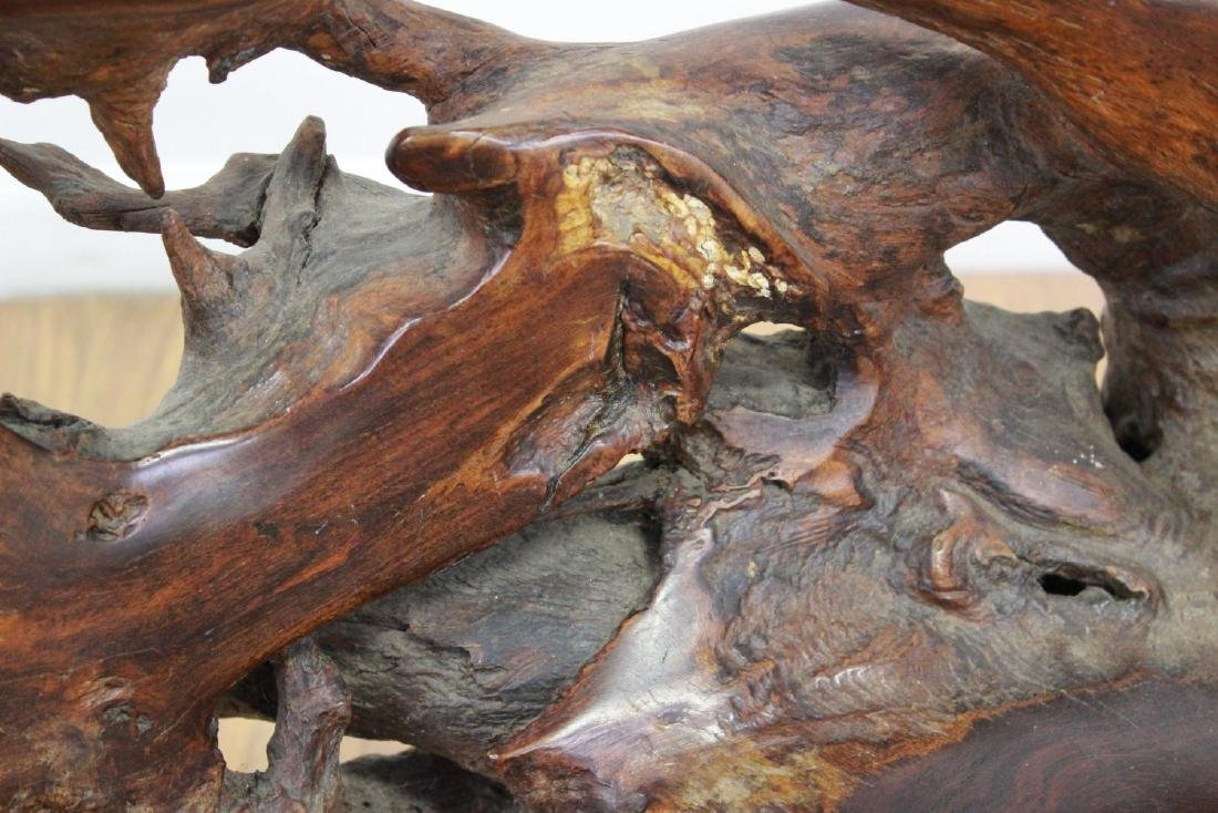 Root Tree Carved Chair - 3