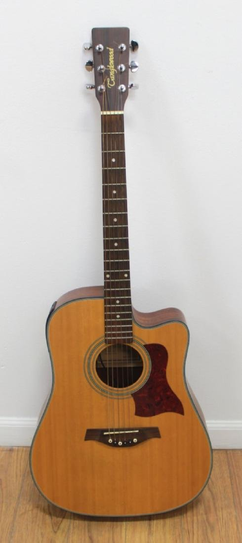 Tanglewood Folk Guitar with Pick-Up & Case