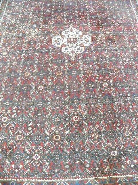 13: Red Persian rug