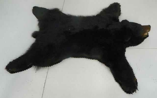 10: Bear rug