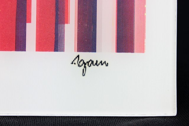 2 Agamographs by Agam numbered and signed - 8