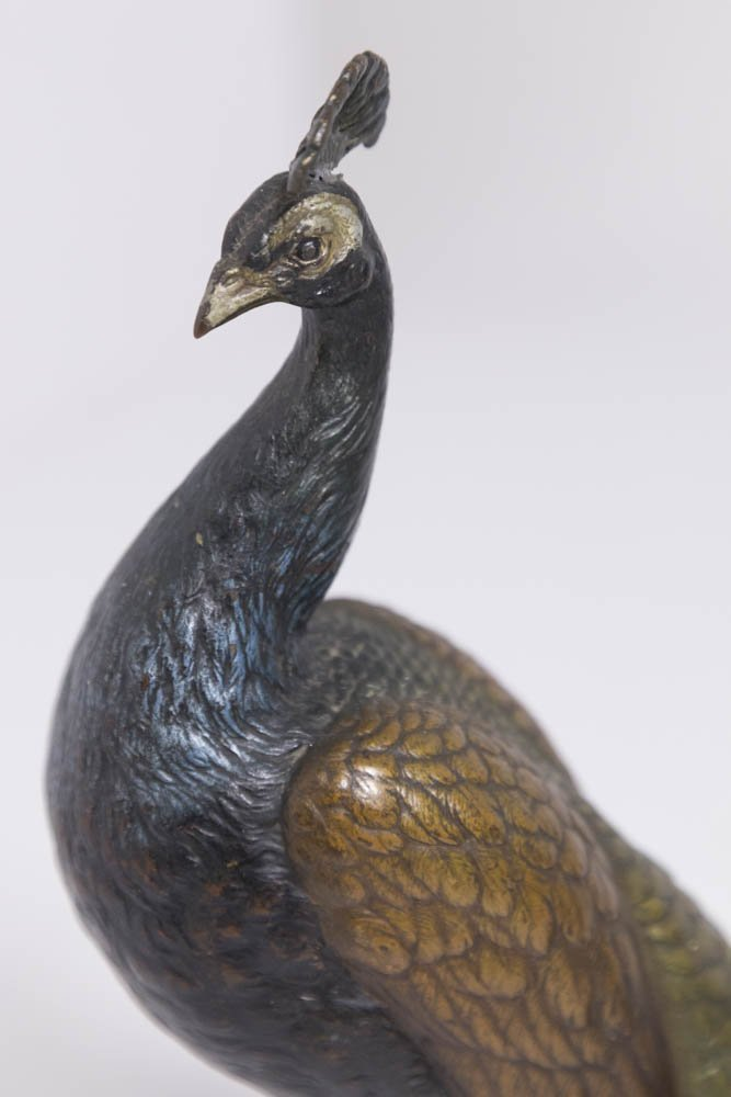 Large Hallmarked Polychromed Vienna Bronze Peacock - 2