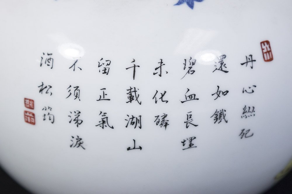 Chinese Porcelain White Ground Vase - 6