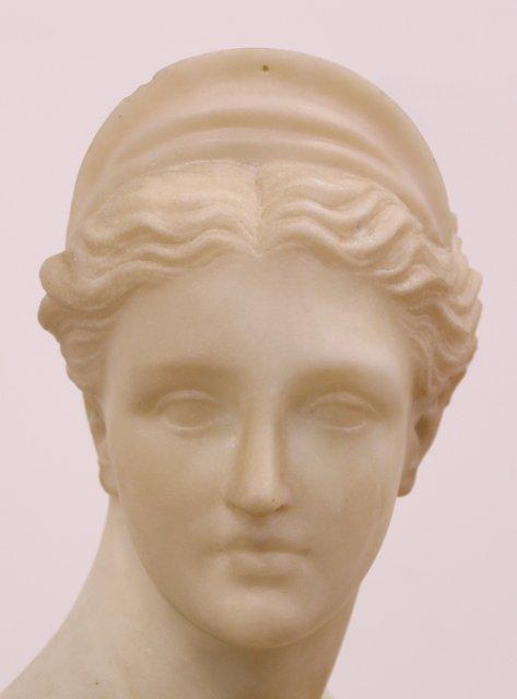 Marble Bust of Venus on Marble Pedestal - 3